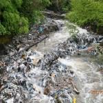 Южна България пред Екокатастрофа!!! Река сее смрад,зарази и дори смърт!!!